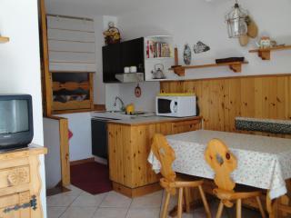 Monolocale sulle piste a Pila (Aosta) - Pila vacation rentals