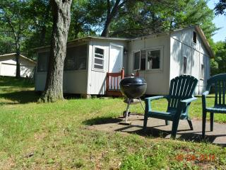 Backwoods Resort Cabin 1 - Barnes vacation rentals