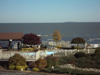 3 Bed. Condo With Nice lake view! - Port Clinton vacation rentals