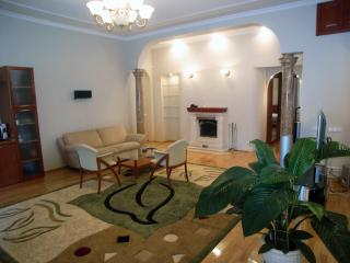 VIP two room apartment in the center - Kiev vacation rentals