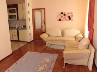 Hi-Tech two room apartment on Independence square - Kiev vacation rentals