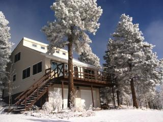 Secluded Mountain House at 9200 Feet - Almont vacation rentals