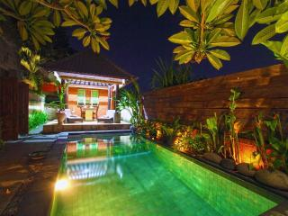 Fresh and New Villa in paddy village - Ubud vacation rentals