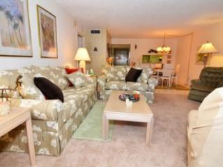 Living room - Gulfside Mid-Rise Unit 207F - Sarasota - rentals