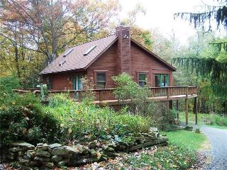 Mountainscape Cabin - McHenry vacation rentals