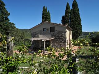 Rustic Tuscan country house in the Florentine hills boasts breathtaking views, sleeps 6 - Florence vacation rentals