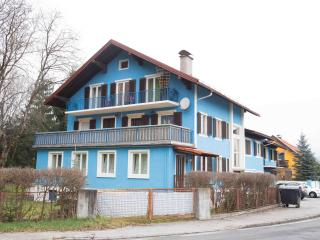 winter/summer paradise - Spittal an der Drau vacation rentals