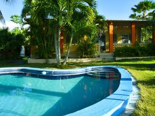 Hilltop House with Pool and Tropical Lush Gardens - Orocovis vacation rentals
