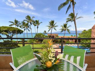 321 - 1 Bed New Vacation Rental Unit - Oceanfront - Lahaina vacation rentals