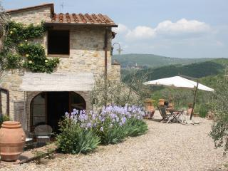CASA AL POGGIO PERFECT LOCATION IN CHIANTI - Tavarnelle Val di Pesa vacation rentals