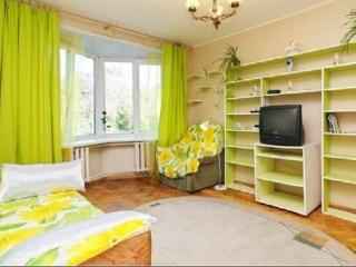 Cozy apartment in the heart of St. Petersburg - Saint Petersburg vacation rentals