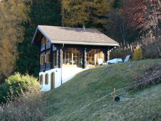 Chalet Perles des Alpes - Nendaz vacation rentals