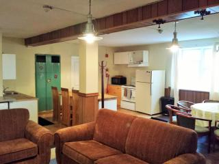 4 Bed Blue Mountain Apartment #214 - Collingwood vacation rentals