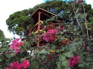 Pitaya - Pointe-Noire vacation rentals