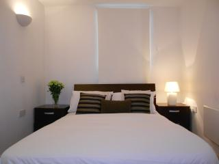 Two Bedroom Apartment Near Station Zone-2 - London vacation rentals