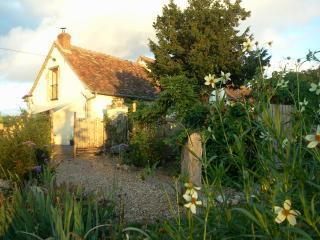 Saule, les Limornieres Loire Valley rental cottage - Le Grand-Pressigny vacation rentals