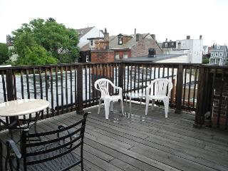 HUGE 3 BR 2 Bath Entire Property w Rooftop Deck - Pittsburgh vacation rentals