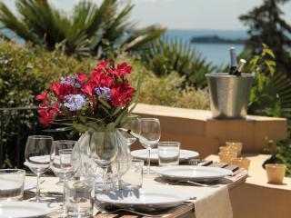 Bouganville New Apartments Terrace  Wide Lake view - Gardone Riviera vacation rentals