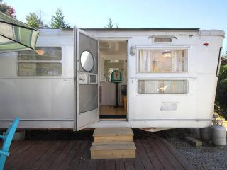 Come stay in a Cool Vintage 1955 Camper- HOT TUB! - Asheville vacation rentals