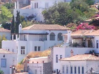The White House - Hydra Town vacation rentals