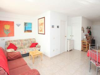 Central Fuengirola - Fuengirola vacation rentals