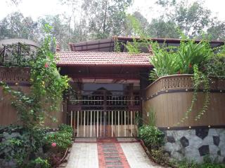 Home for the holidays - Thodupuzha, Kerala, India - Thodupuzha vacation rentals