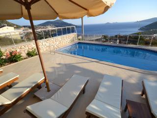 4 Bedroom Villa Teo With Airport Transfer - Kozakli vacation rentals