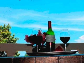 Kastytis Kourt - Ocean view apartment - Manuel Antonio National Park vacation rentals