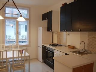 Cental topfloor apartment next (50m )Danube river - Budapest vacation rentals