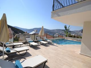 4 Bedroom Villa Lmn(FREE CAR OR AIRPORT TRANSFER) - Kozakli vacation rentals