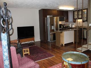 ORO409 Condo w/ Wood Stove, Wifi, Common Area Hot Tub - Dillon vacation rentals
