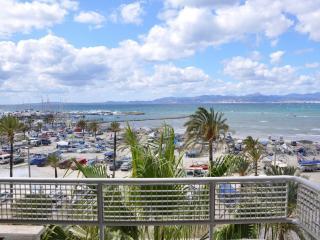 Arenal - 0572 - El Arenal vacation rentals