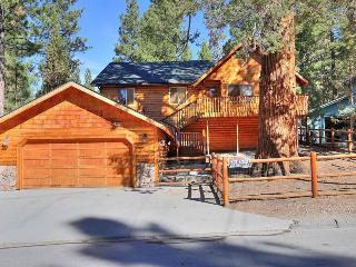 Hillen Dale Haus #1515 - Big Bear City vacation rentals