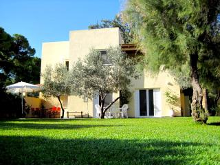 Beachfront Villa at Marathonas - Nea Makri vacation rentals