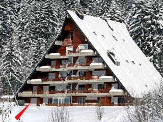 Anemone 1 - Vaud vacation rentals