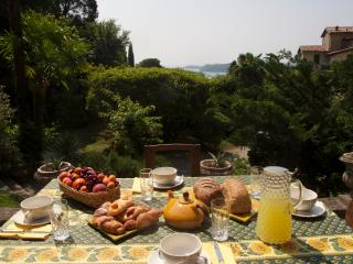Fontanina Charming Historical Lake View Villa - Gardone Riviera vacation rentals