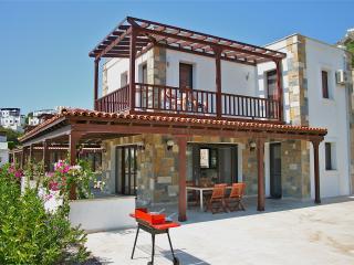 Luxe villa met privé zwembad in Gundogan - Gundogan vacation rentals