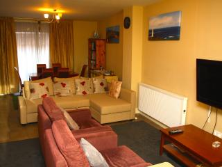Dublin Centre Home from Home Apt C - County Kildare vacation rentals