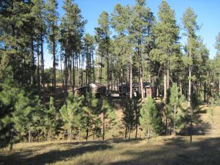 Lazy Pines Cabin - South Dakota vacation rentals