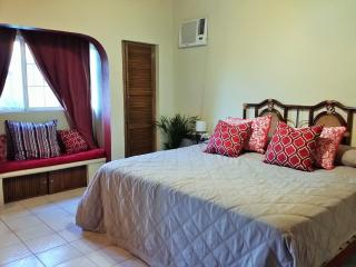 Casa Esmarelda 4 BR house two blocks from the beach - San Pancho vacation rentals