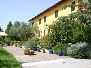 CASA LUCIANA - Castelfranco Di Sotto vacation rentals