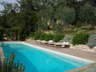 RICAVOLI - San Donato In Collina vacation rentals
