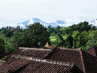 Murni's Houses and Spa, Ubud, Bali - The Studio - Ubud vacation rentals