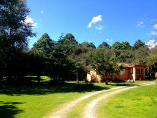 BEAUTIFUL CHALET INSIDE THE FOREST, RELAX AND COMF - San Cristobal de las Casas vacation rentals