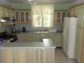 Spacious 1br - Kingston vacation rentals