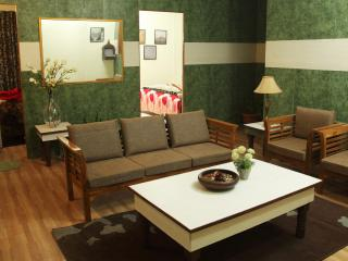 accommodation near airport @ low cost - New Delhi vacation rentals