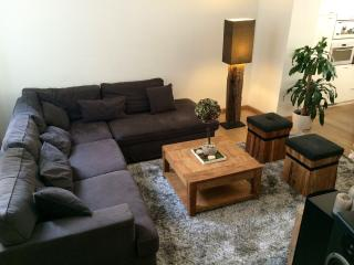 Duplex 160m² with sauna & piano - Antwerpen vacation rentals