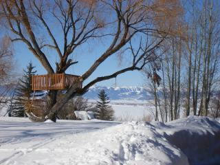 Cabin in the Tetons - Alta vacation rentals