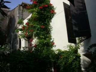 Sun & Garden in Medieval Village - South of France - Languedoc-Roussillon vacation rentals