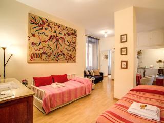 Spagna 2 - Lazio vacation rentals